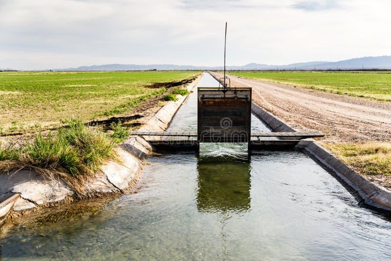 Zanja de irrigación con la agua corriente imagenes de archivo