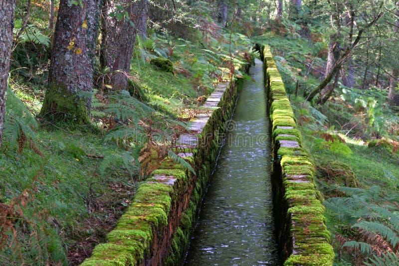 Zanja de irrigación para la canalización del agua foto de archivo