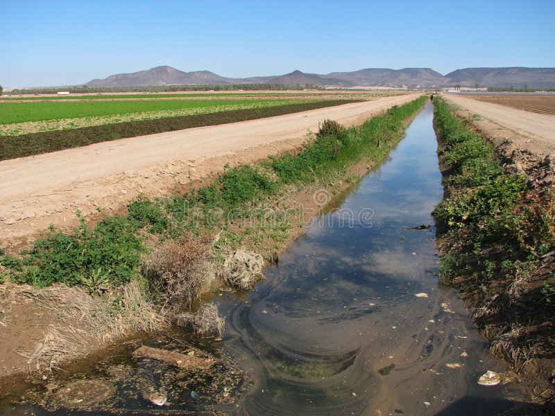 Zanja de irrigación sucia fotos de archivo libres de regalías
