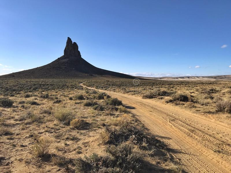 Zanna dei verri, Wyoming U.S.A. fotografie stock libere da diritti