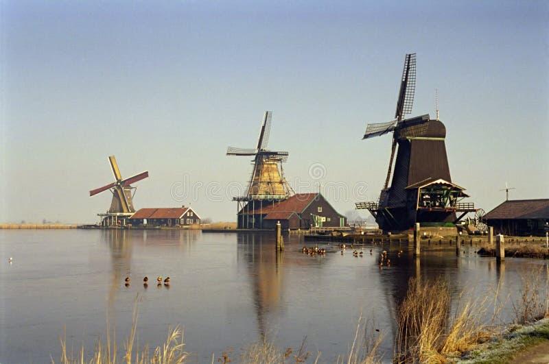 Zanse Schaans, Países Baixos imagens de stock