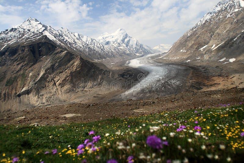 Zanskar dolina zdjęcie stock