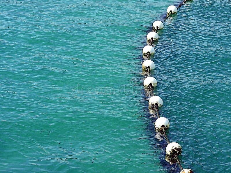 Zanurzający rekin sieci zbliżenie w głębokiej wodzie zdjęcie stock