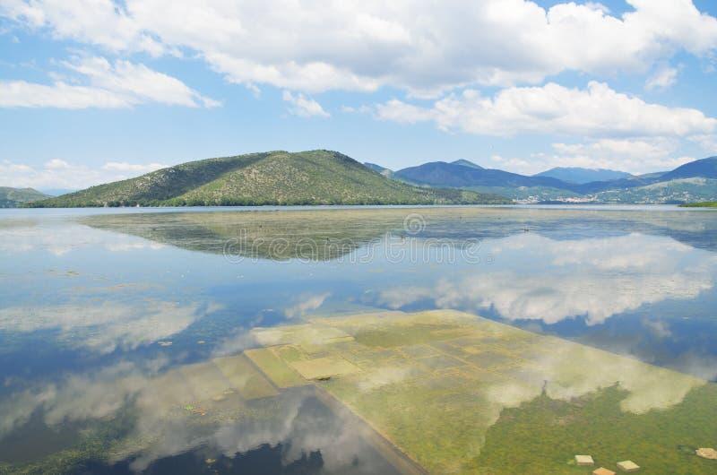 Zanurzający molo w jeziorze fotografia royalty free