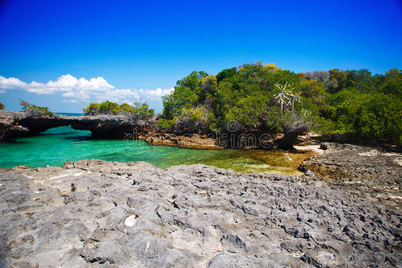 Download Zanzibar stock photo. Image of landscape, urban, relaxation - 29617718