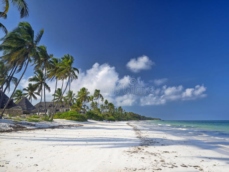 Zanzibar beach. Beautiful beach in Bwejuu, Zanzibar royalty free stock images