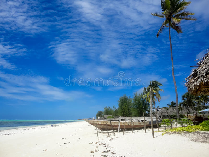 Zanzibar beach. Detail from the beach in Zanzibar royalty free stock photos