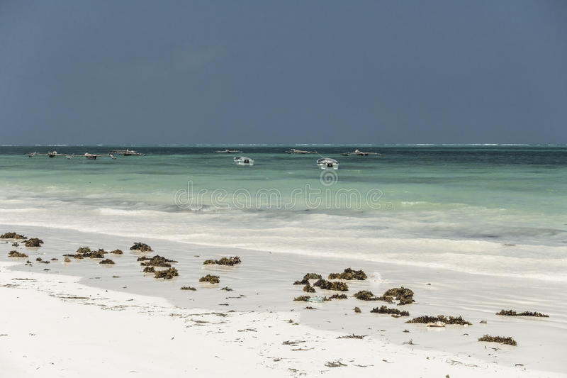 Zanzibar beach. Tropical beach in Kiwengwa Village on Zanzibar Island. Tanzania , Africa royalty free stock photo