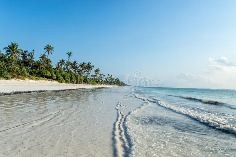 Zanzibar. A deserted beach on the tropical island of Zanzibar royalty free stock image