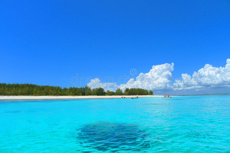 Zanzibar Mnemba island beach stock image