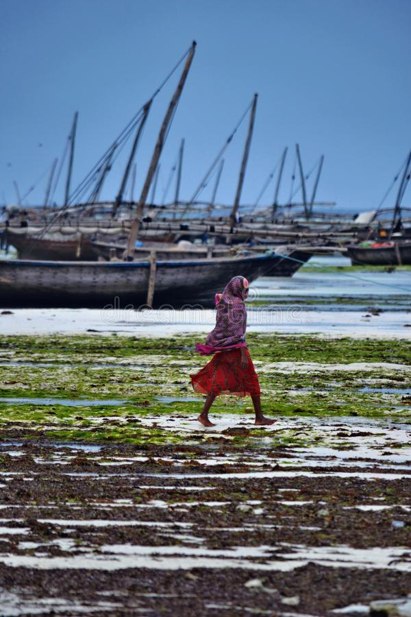Low tide. noon. Zanzibar. Tanzania. The tide was gong out and kept going out for another five hours stock photos