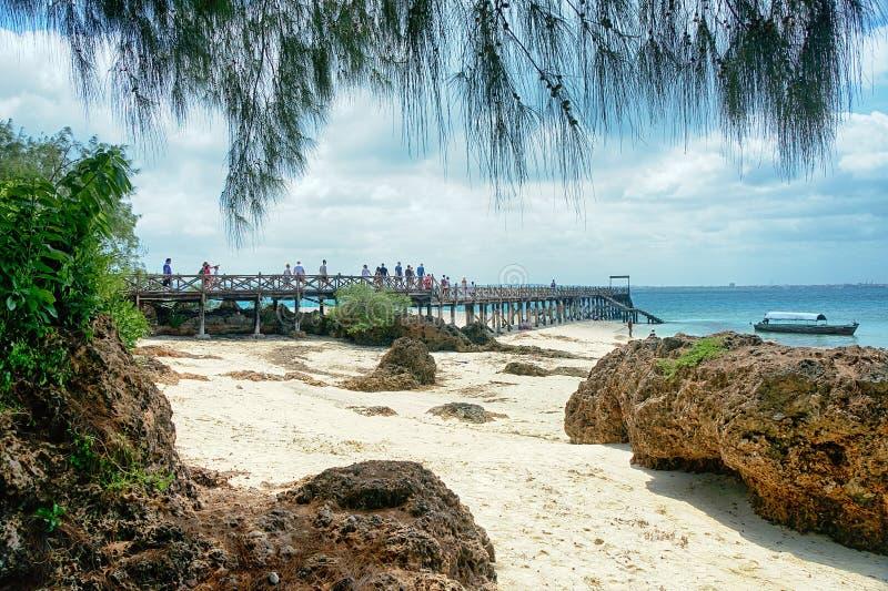 Zanzibar - tropikerna - fängelseöstranden, vaggar och havet royaltyfria foton