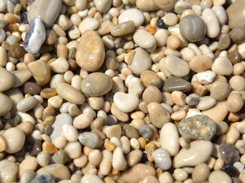 Zaokrąglone i okrzesane plażowe skały obrazy stock