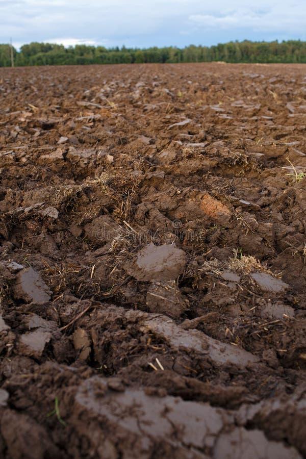 Zaorany pole z ciągników śladami w wiosna czasie, gospodarstwa rolnego glebowy tło fotografia royalty free