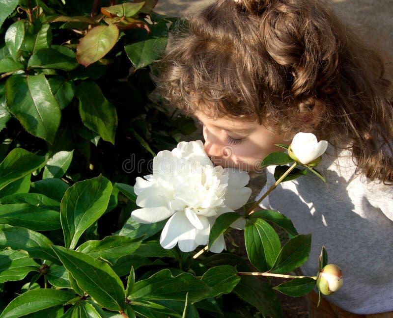 Download Zapach kwiatów obraz stock. Obraz złożonej z ludzie, dosyć - 138369
