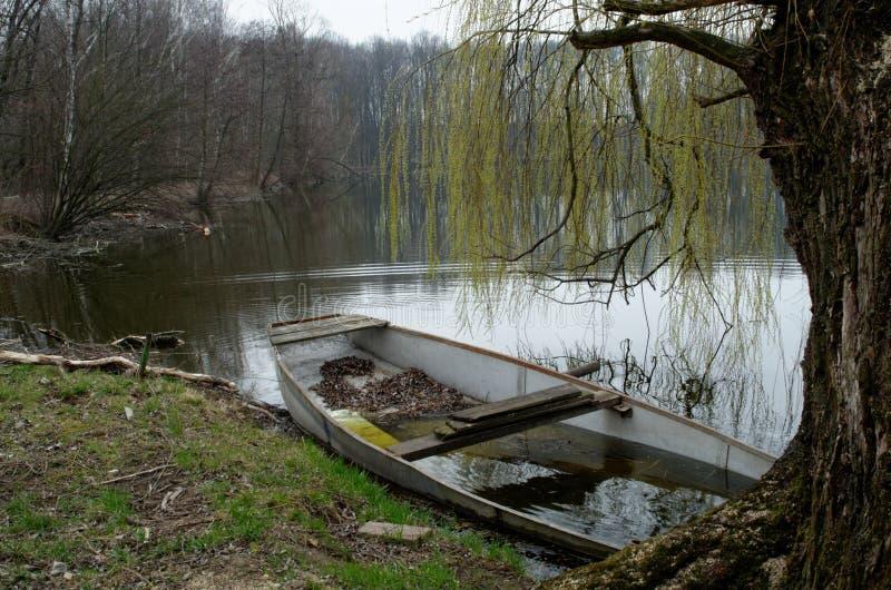 Zapadnięta łódź pod wierzbowym drzewem w jeziorze obrazy stock