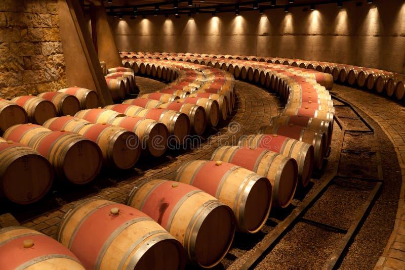 zapata виноградника mendoza катены Аргентины стоковые фото