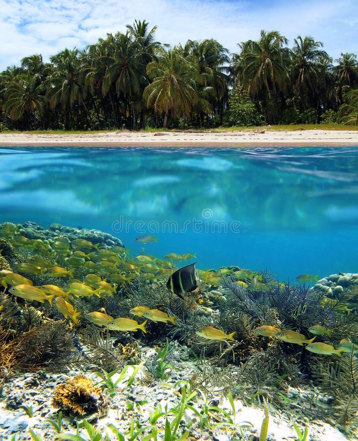 Zapatilla Island Stock Photography