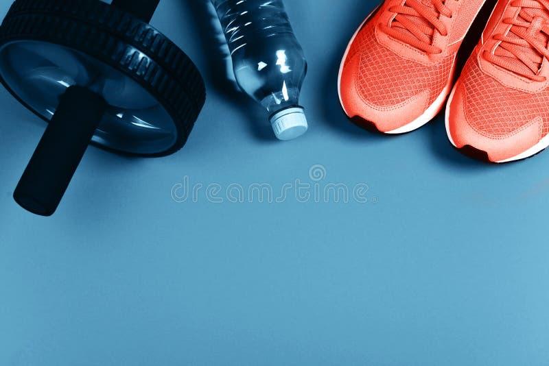 Zapatillas de deporte coralinas de vida en fondo azul foto de archivo