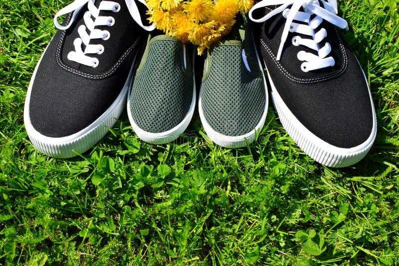 Zapatillas de deporte del niño y zapatillas de deporte adultas en hierba fotografía de archivo