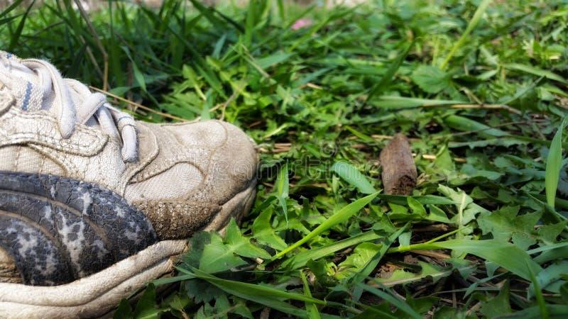 Zapatillas de deporte en la hierba imagen de archivo libre de regalías