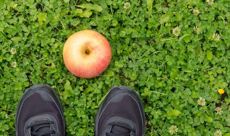 Zapatillas de deporte y manzana negras en hierba verde fresca foto de archivo