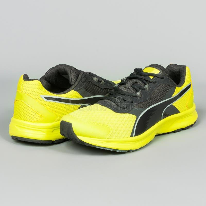 zapatillas deportivas amarillas con negro en fondo gris imágenes de archivo libres de regalías