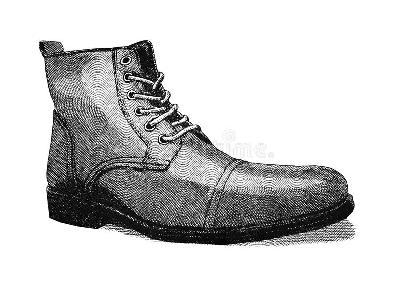 zapato ilustración del vector
