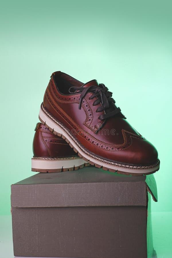 Zapato de cuero de Brown imagen de archivo