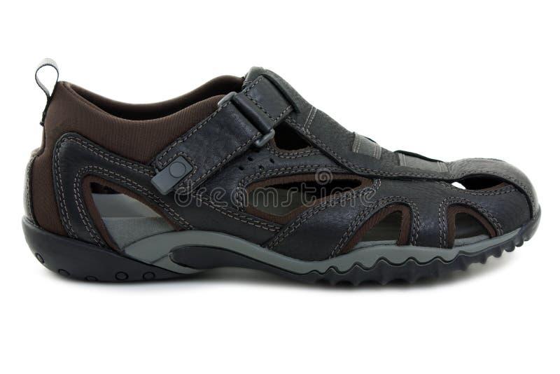 Zapato de la sandalia imagen de archivo libre de regalías
