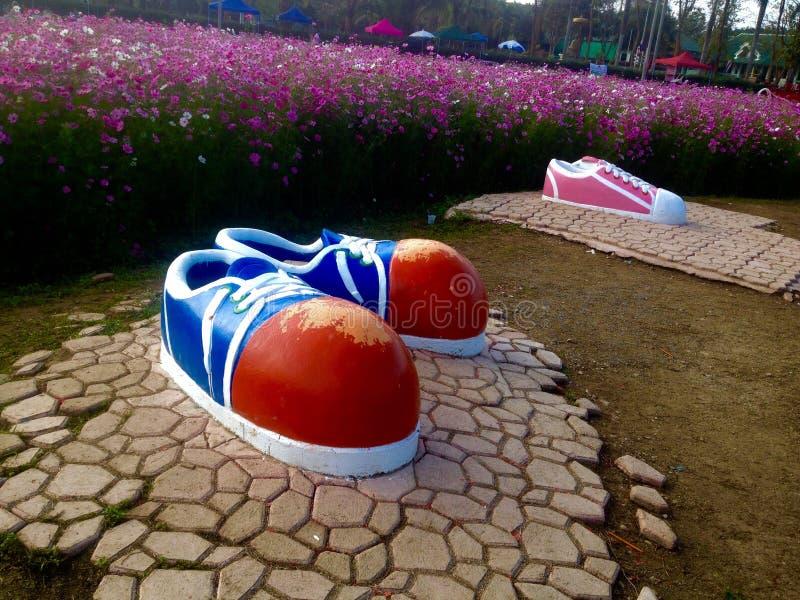 Zapato grande imagen de archivo