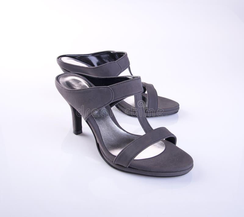 zapato o sandalia femenina de la moda en fondo imagen de archivo libre de regalías
