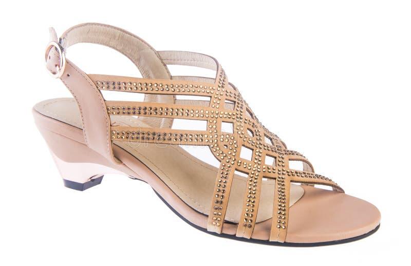 zapato sandalia de la mujer en un fondo imágenes de archivo libres de regalías
