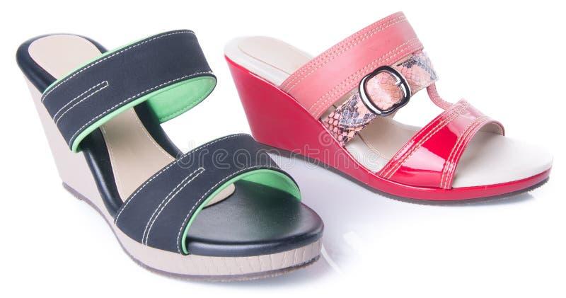zapato sandalia de la mujer en un fondo fotografía de archivo libre de regalías