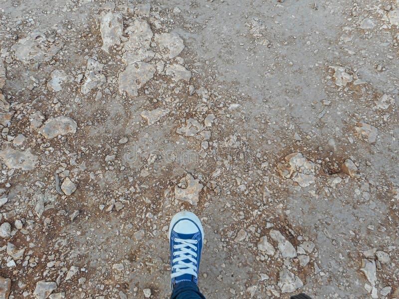 zapatos azules en una roca imagen de archivo libre de regalías