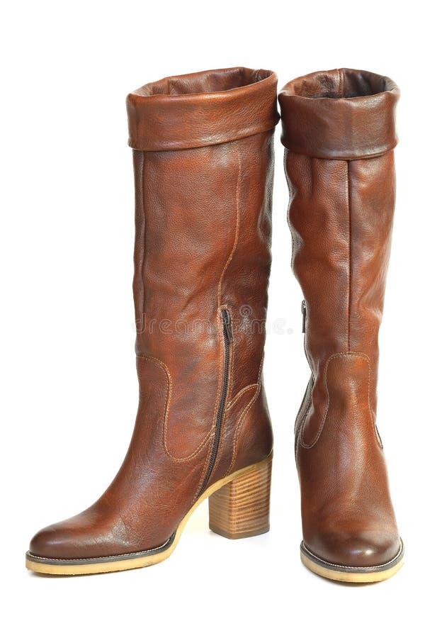 Zapatos de cuero marrones femeninos fotografía de archivo