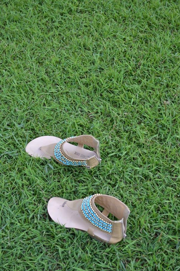 Zapatos de la moda de la señora de Brown en lado izquierdo que camina del césped imagen de archivo