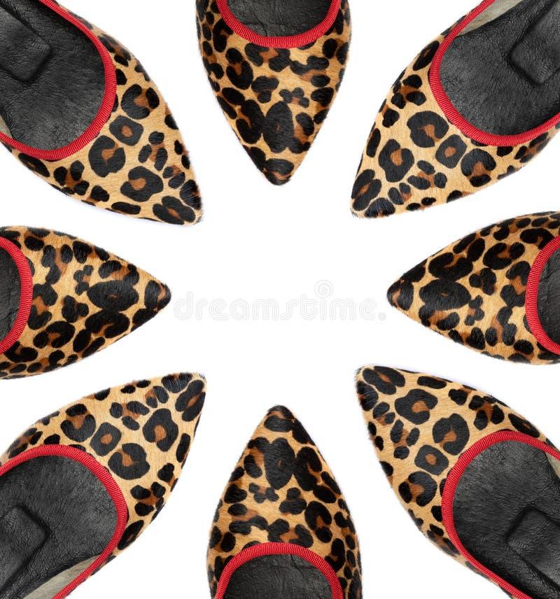 Zapatos de la mujer del leopardo en el fondo blanco imagenes de archivo