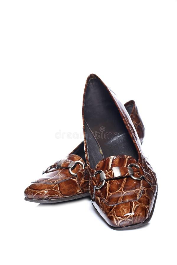 Zapatos De La Señora Imágenes de archivo libres de regalías