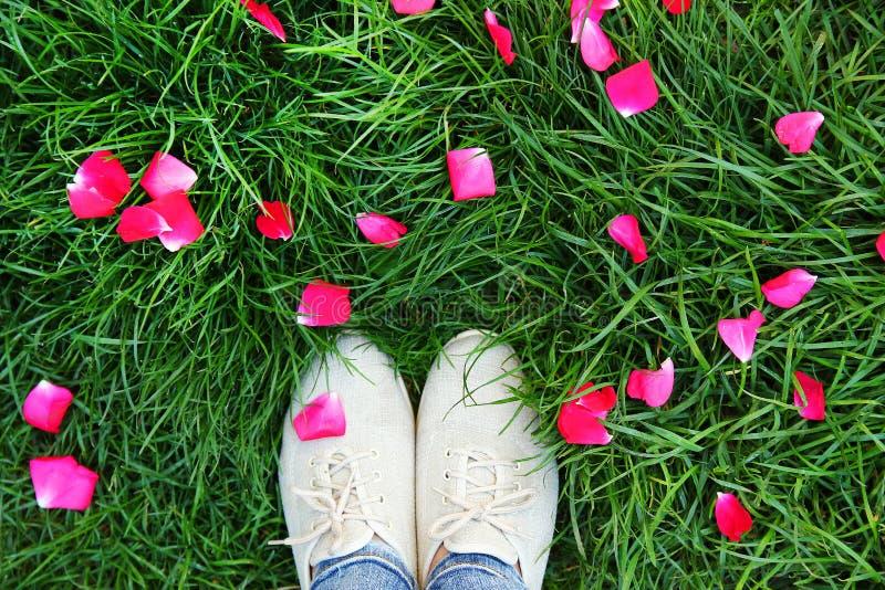 Zapatos de las piernas en la hierba verde fotos de archivo libres de regalías