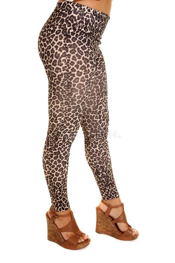 Zapatos de las polainas del leopardo imagenes de archivo