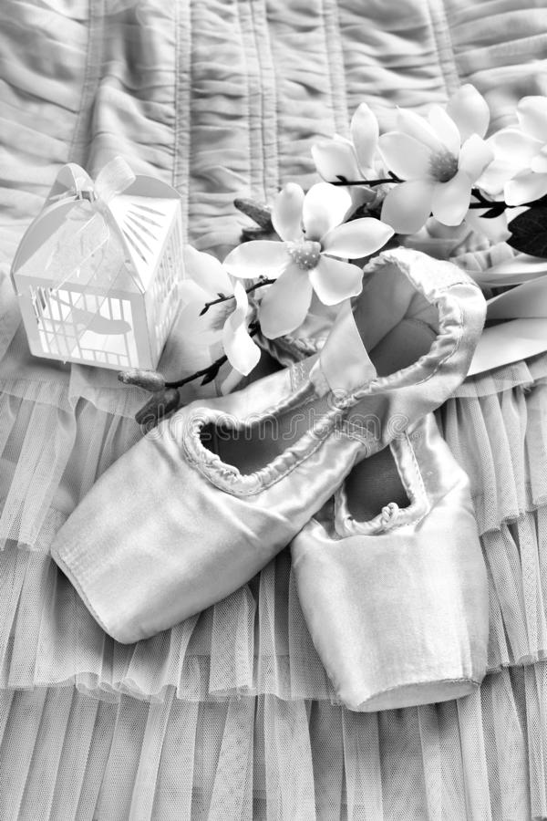 Zapatos del pointe del ballet que mienten en el vestido de Tulle en blanco y negro fotos de archivo