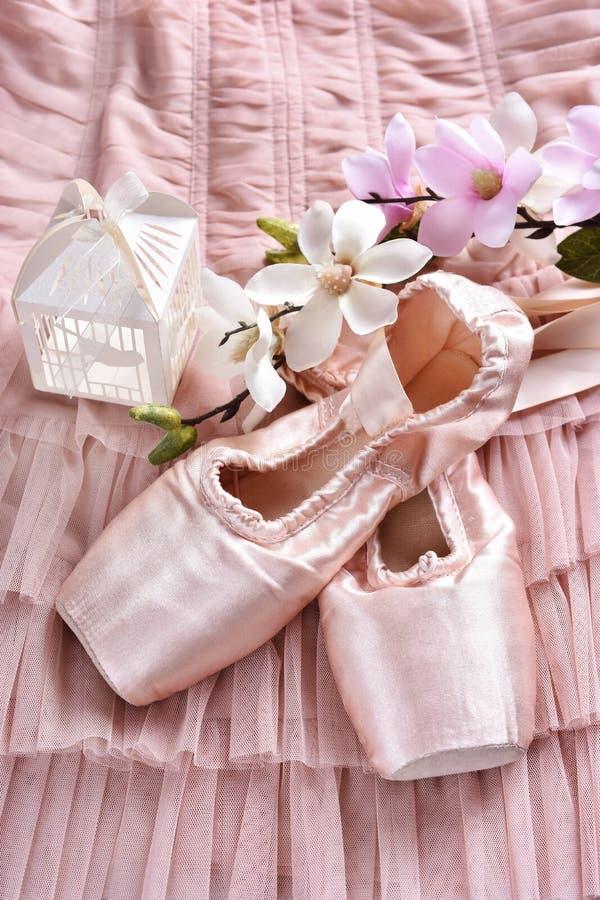 Zapatos del pointe del ballet que mienten en el vestido de Tulle fotos de archivo
