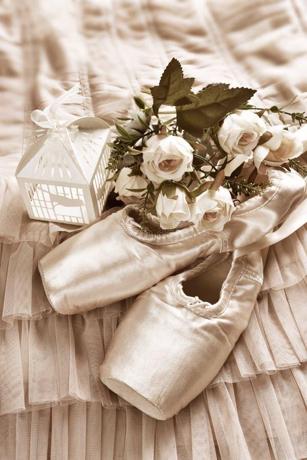 Zapatos del pointe del ballet que mienten en el vestido de Tulle en sepia foto de archivo