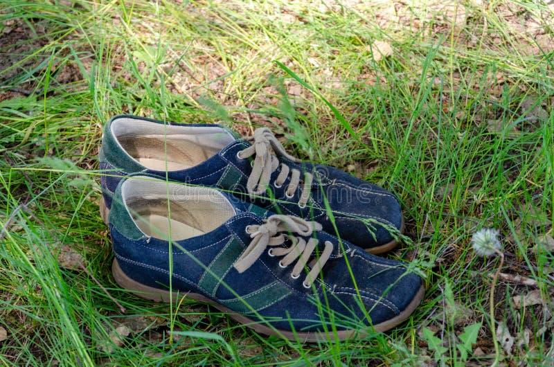Zapatos gastados en hierba en un bosque del verano imágenes de archivo libres de regalías