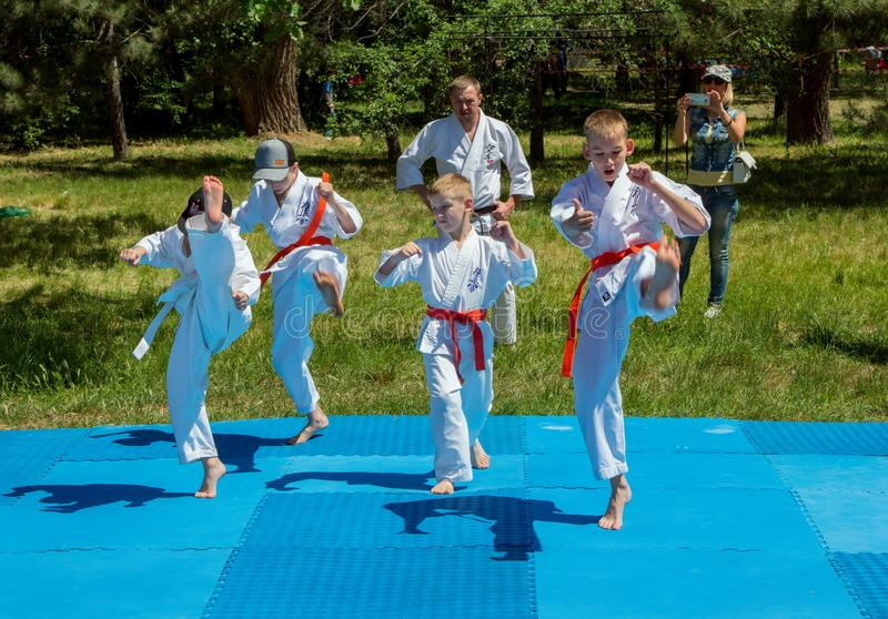 Boys participate in outdoors karate training royalty free stock photography