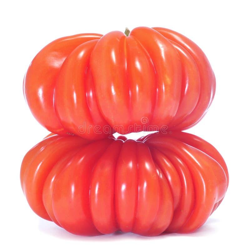 Zapotec heirloom tomatoes royalty free stock photo