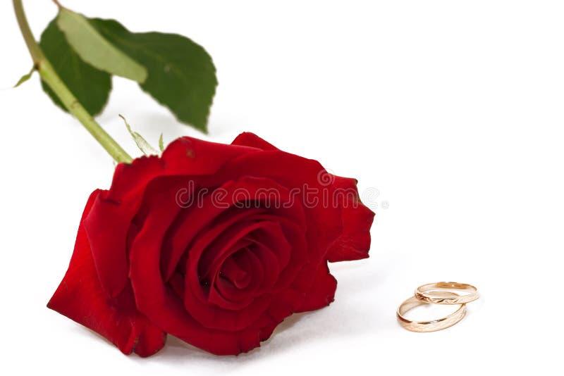 zaproszenie na ślub karty, obrazy stock