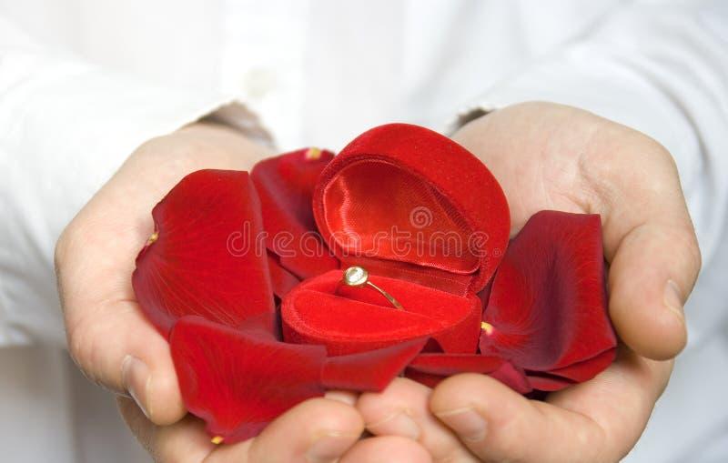 zaręczynowego płatków pierścionku różany valentine zdjęcie stock