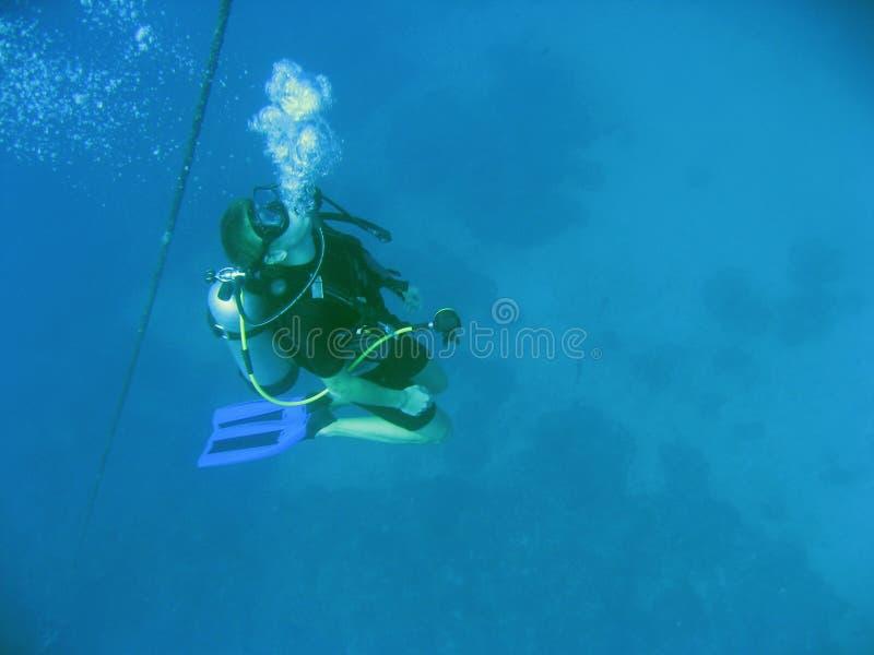 zaraz nurka z podwodny akwalung zdjęcie royalty free